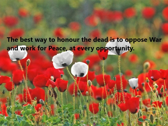 White poppies for peace header with words